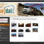 Wdrożenie i oprawa graficzna dla firmy SOJDAL