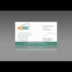 Projekt i wykonanie wizytówki dla firmy SOJDAL
